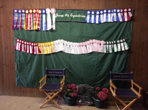 fields and fences nijha show ribbons